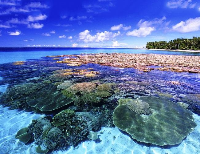 Đảo san hô KohLan