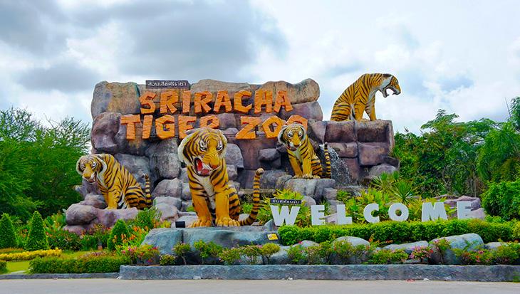 Tiger Zoo - Bangkok - Thái Lan