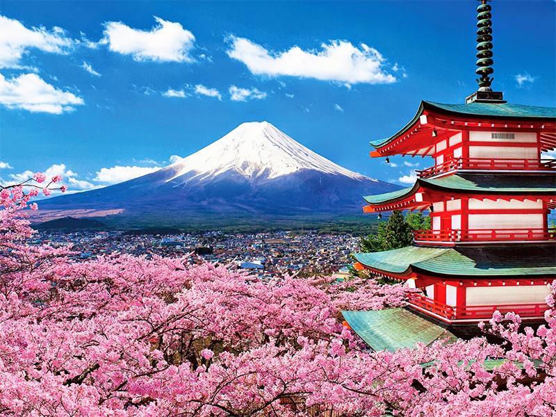 Image result for du lịch nhật bản
